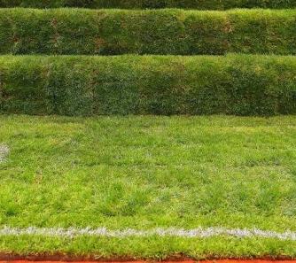 园林景观人造草坪
