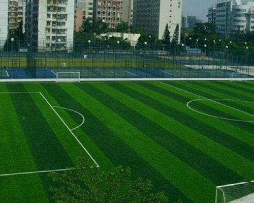 山东人造草坪